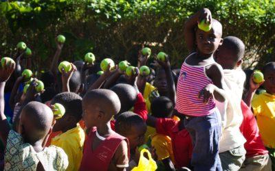 16 Ottobre, Giornata Mondiale dell'Alimentazione. Obiettivi FAO: promuovere diete sane e scongiurare qualsiasi forma di malnutrizione